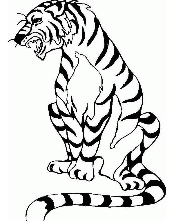 Gambar Mewarnai Harimau : gambar, mewarnai, harimau, Mewarnai, Harimau, Akana, Gambar
