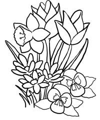 Ausmalbilder Sommerblumen Easy Summer Coloring Sheets