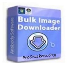 Bulk Image Downloader Crack 2022