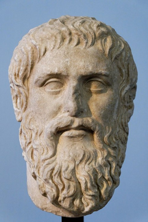 Busto Platon