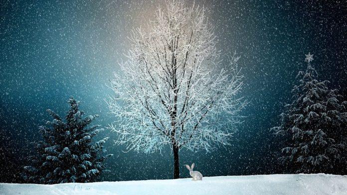 sucesos historicos navideños