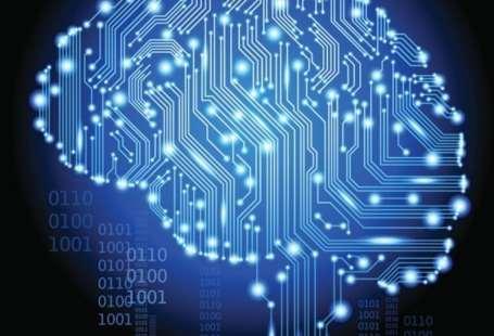 procesamiento cerebral