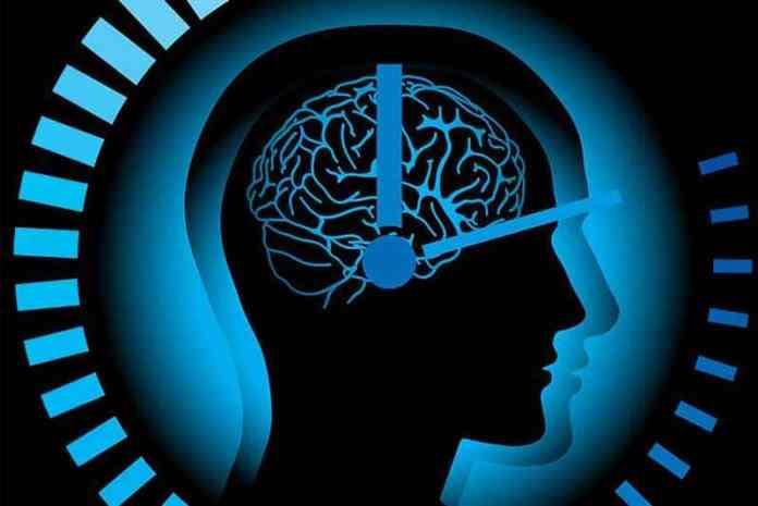 ¿Que es el ciclo circadiano?