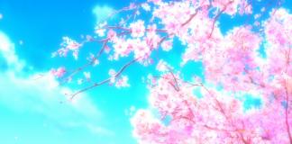 cherry blossom anime romance