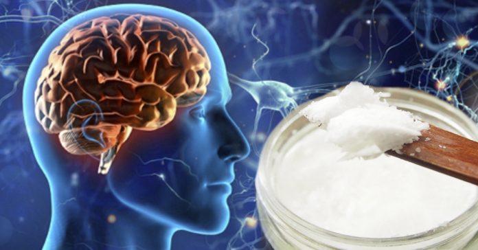 cerebro humano y aceite de coco