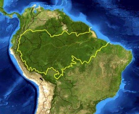 Extensión del Amazonas