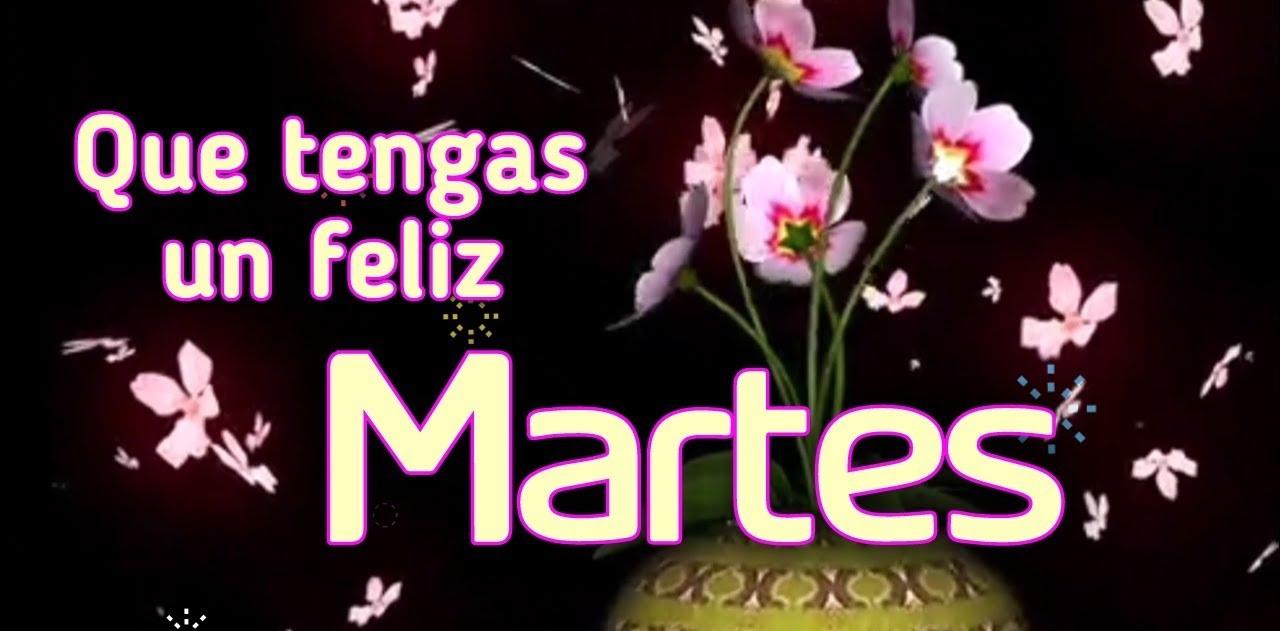 Feliz Martes 117