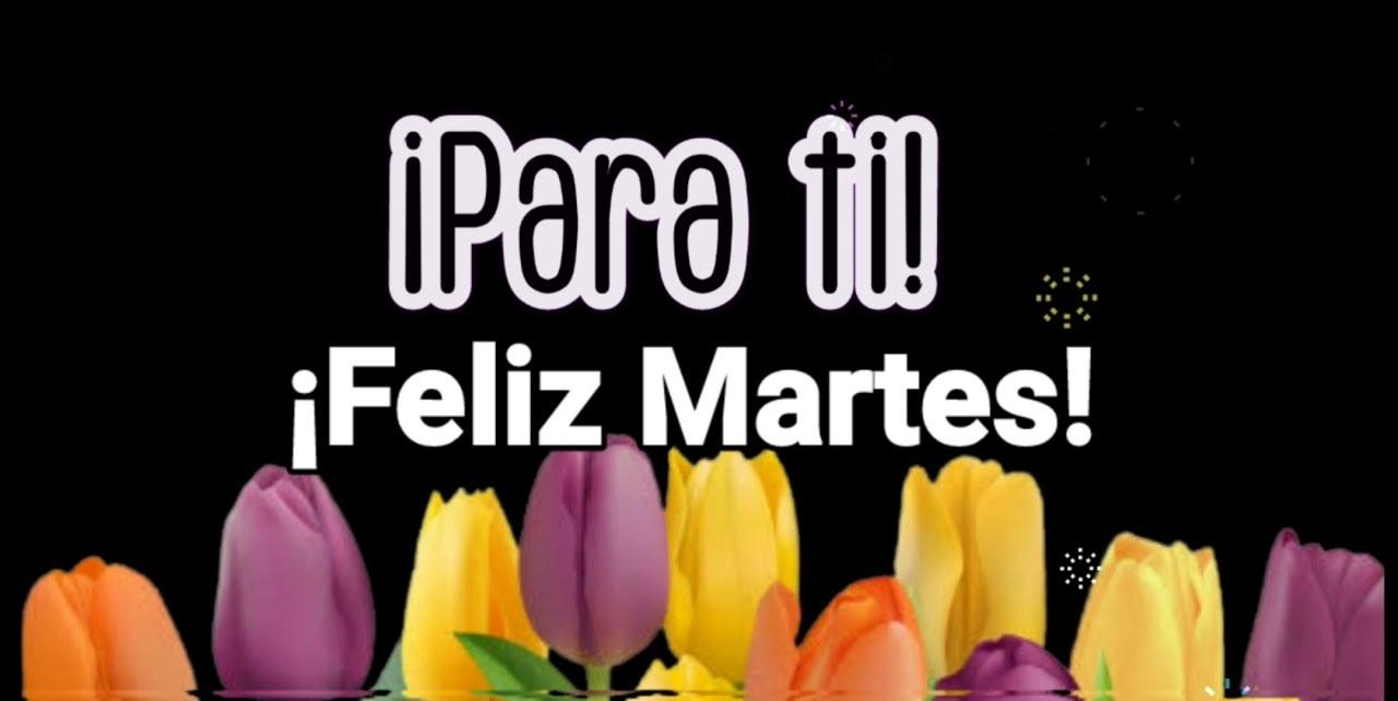 Feliz Martes 137 1