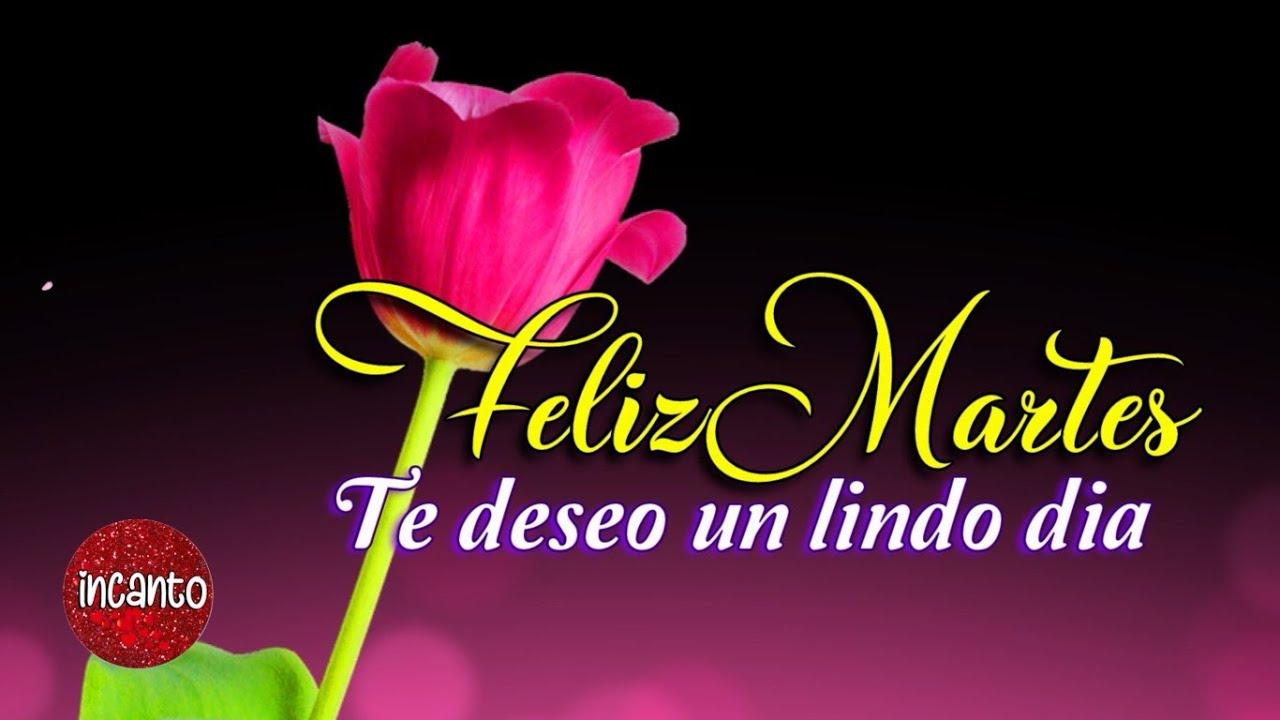 Feliz Martes 139 1