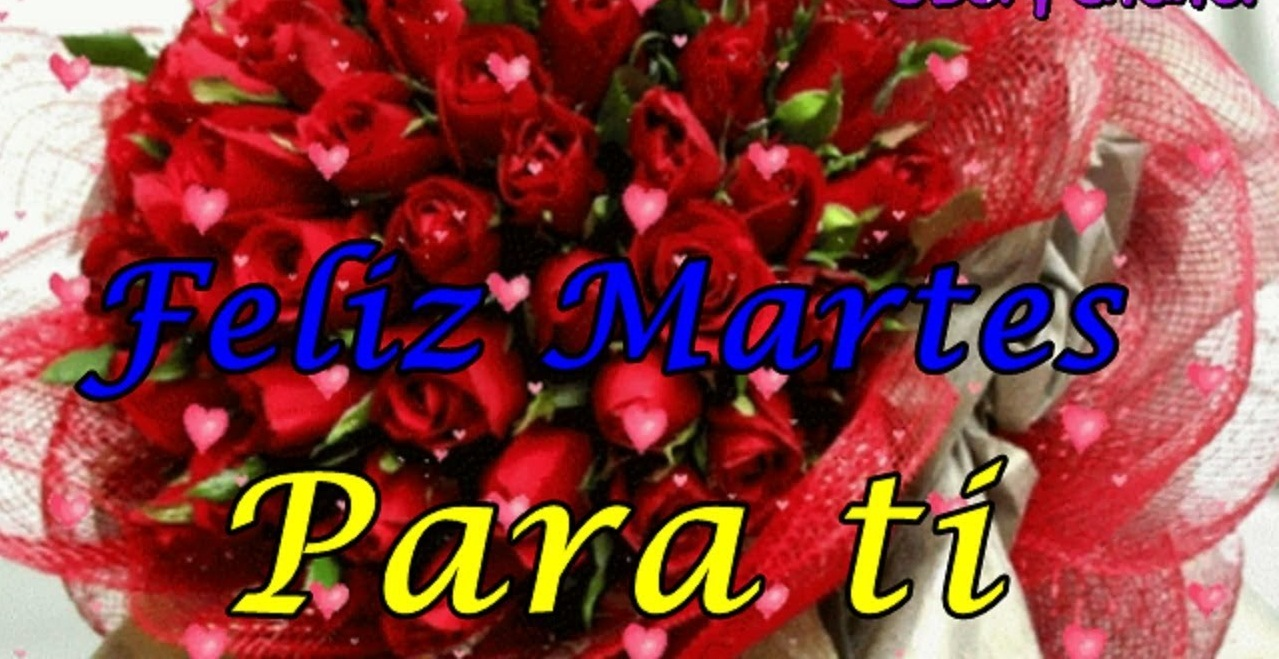 Feliz Martes 143 1