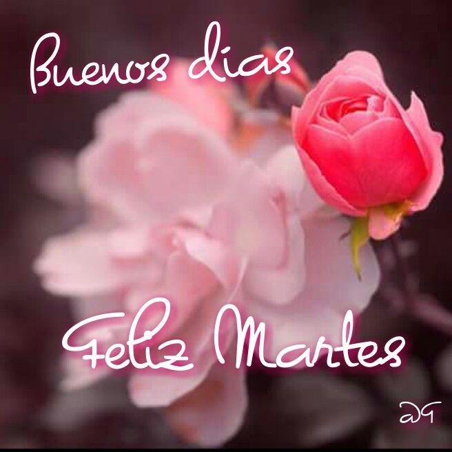 Feliz Martes 147 1