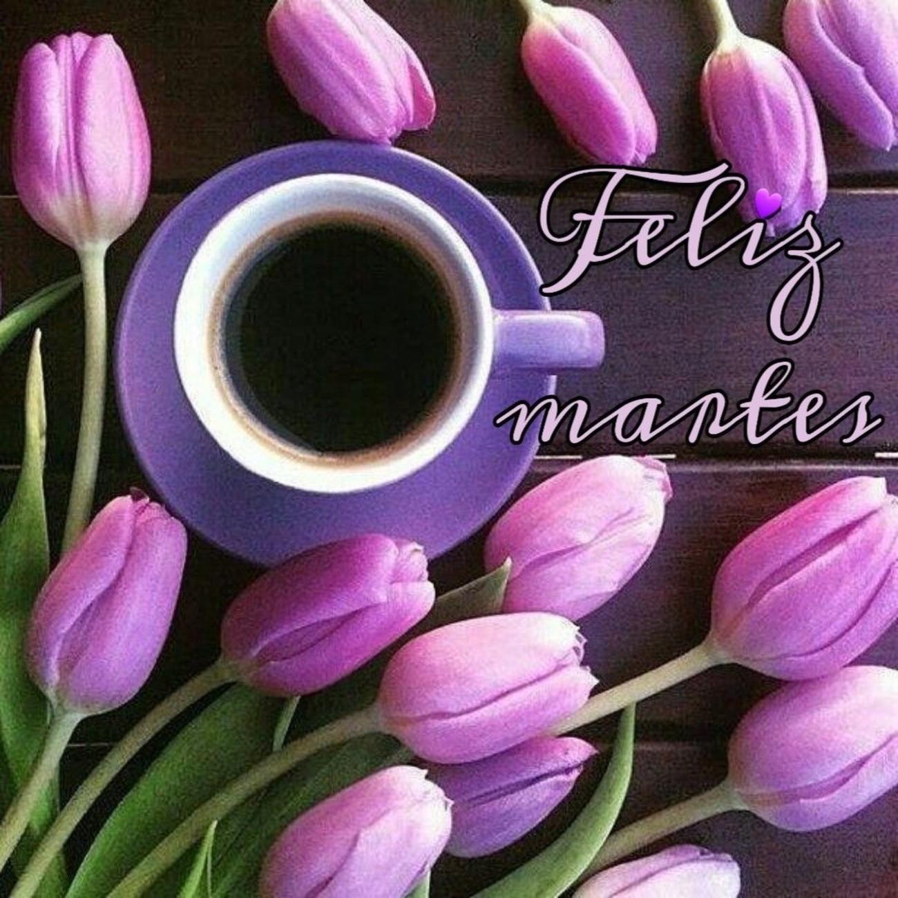 Feliz Martes 65 1