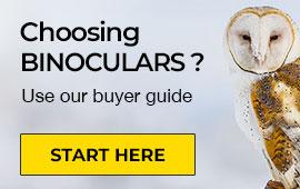 Choosing Binoculars Guide