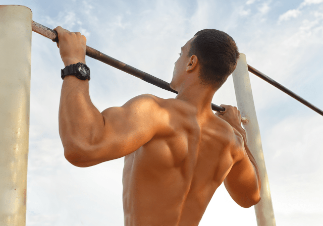 Pull ups bodyweight training