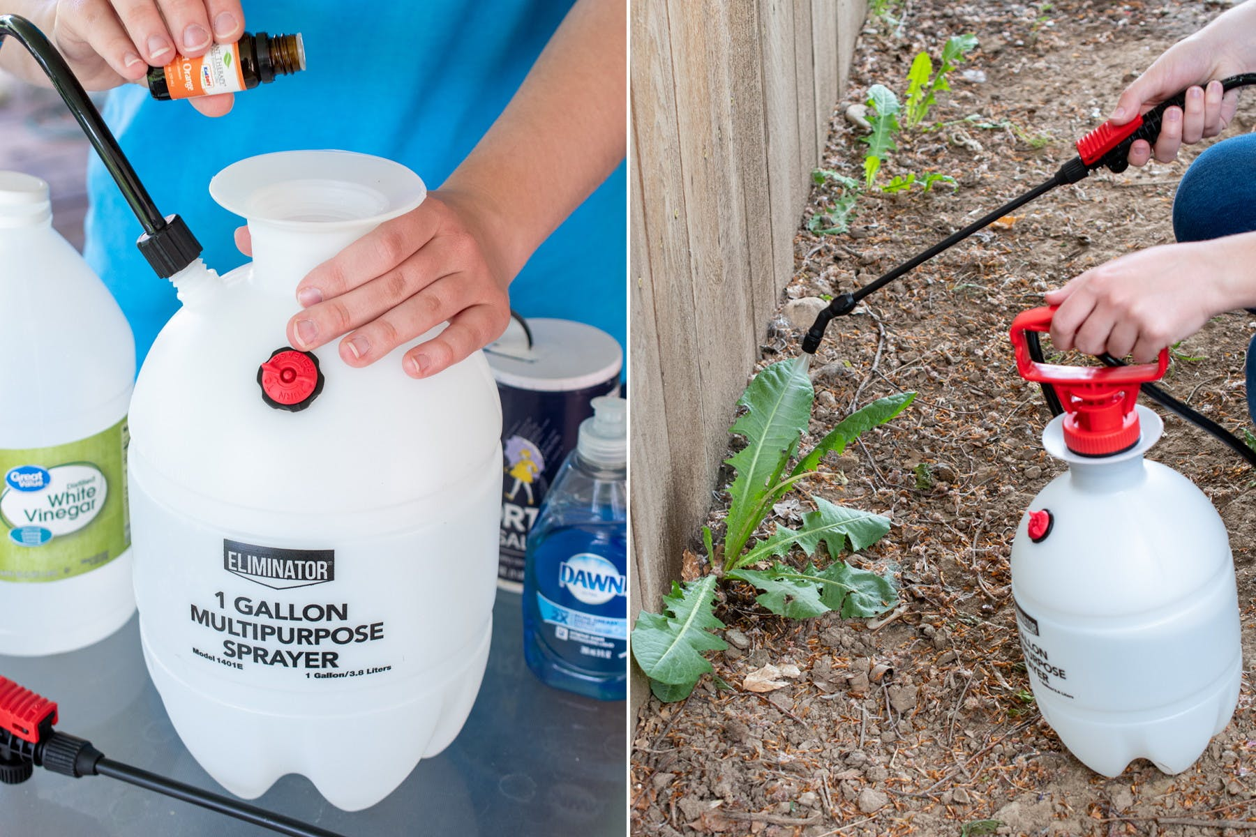 10 Homemade Weed Killers That Actually Work The Krazy Coupon Lady