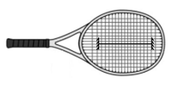 Solved: Tennis Is A Professional Sport That Relies Upon Th