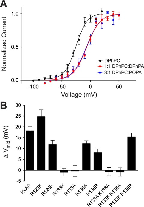 Phosphatidic acid modulation of Kv channel voltage sensor