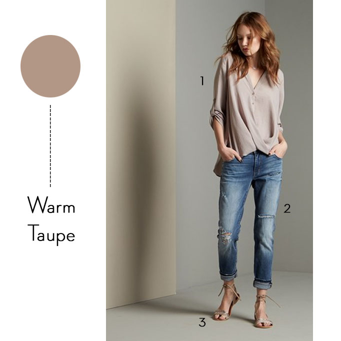 pantone-color-warm-taupe