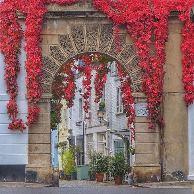 fall-in-london-street