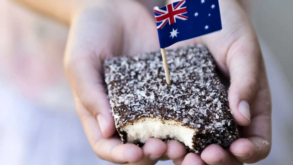 Image result for lamington