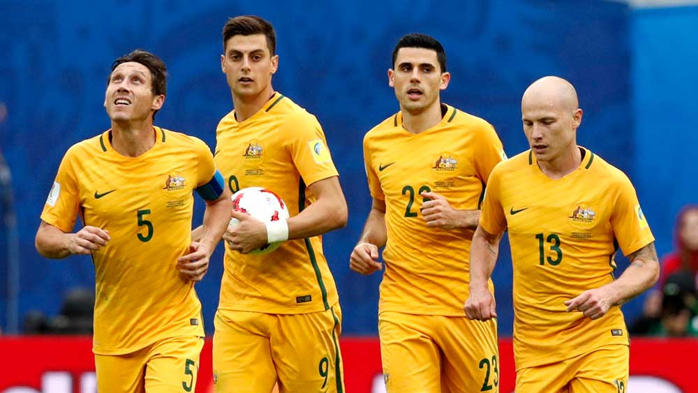 Image result for socceroos