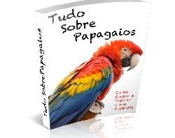 Tudo Sobre Papagaios