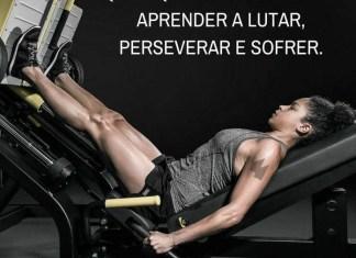 Frases de motivação - Quem quiser vencer deve aprender a lutar, perseverar e sofrer.