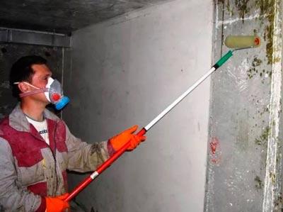 Протравка цементной штукатурки раствором блок керамзитобетон полнотелый