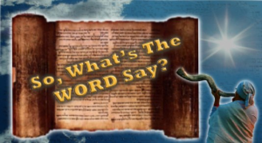 So Whats The Word Say