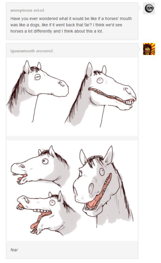 horse like dog