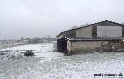 Winter wonderland looks rather chilly.