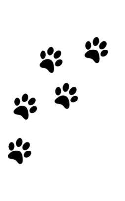 Dog Paw Drawing : drawing, Print, Writing, Drawing, Journal, Michael, Huhn,, Paperback, Barnes, Noble®
