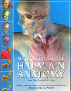 Title the new atlas of human anatomy author thomas  mccracken also general  miscellaneous bargain books rh barnesandnoble