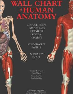 Hardcover also wall chart of human anatomy  full body images and detailed system rh barnesandnoble