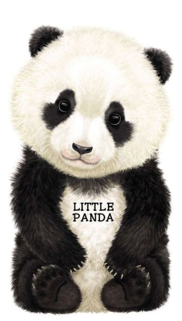 Baby Kung Fu Panda Hd Wallpapers Little Panda Look At Me Books Series By L Rigo