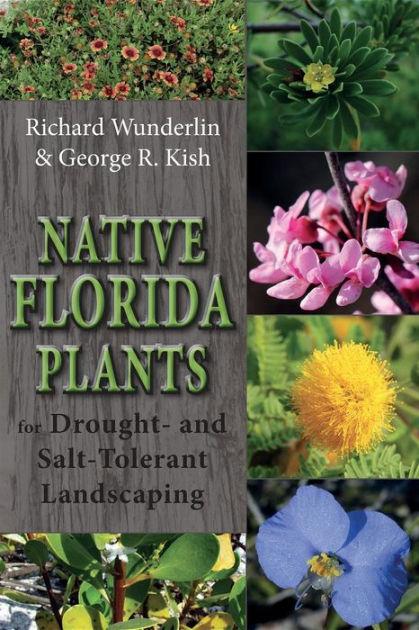 native florida plants drought