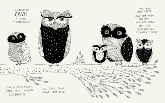 The Illustrated Compendium of Amazing Animal Facts by Maja