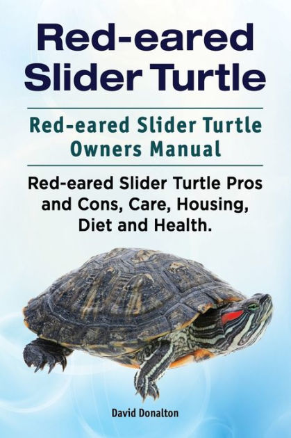 Redeared Slider Turtle Redeared Slider Turtle Owners