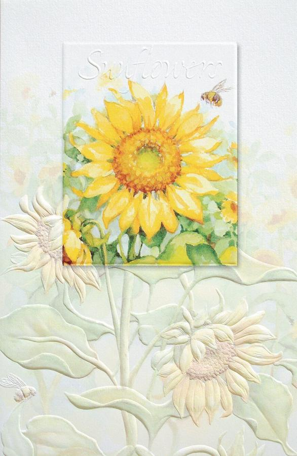 Pumpernickel Press Sunflower Field Bday Greeting Cards
