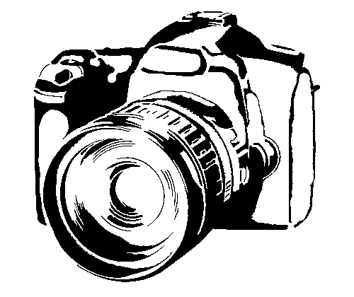 Photography ( Price for 25 professionals pictures