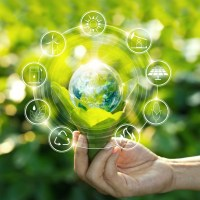8 Best Eco-Friendly Brands of 2021: Top Sustainable Products