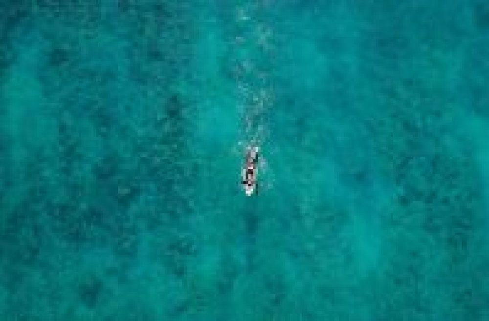 surfer paddling