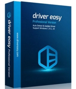 DriverEasy Pro 5.6.12 License Key (Crack + Torrent) (2020)