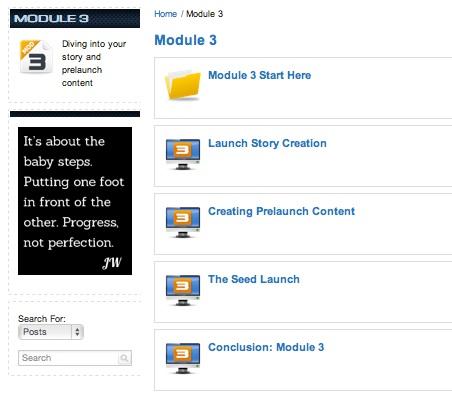 Product Launch Formula Review Module 3