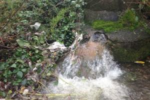 Vertidos residuales en el lago de Sanabria – Foto: elPais.com