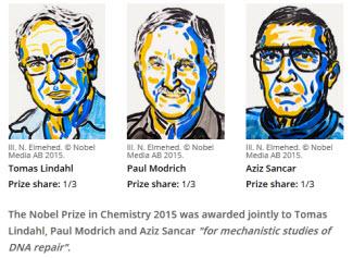 Lindahl, Modrich y Sancar