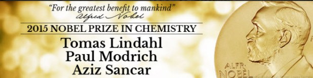 Premio Nobel de Química 2015