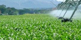Prosperidad y medio ambiente