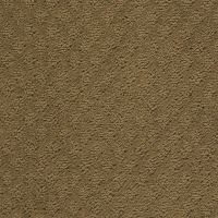 Anso Nylon Carpet Reviews - Carpet Ideas