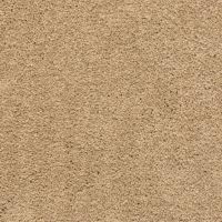 Plush Carpet Styles | Empire Today